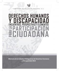 Derechos Humanos y Discapacidad, Encuentros Perspectivas y Elementos para la Participación Ciudadana