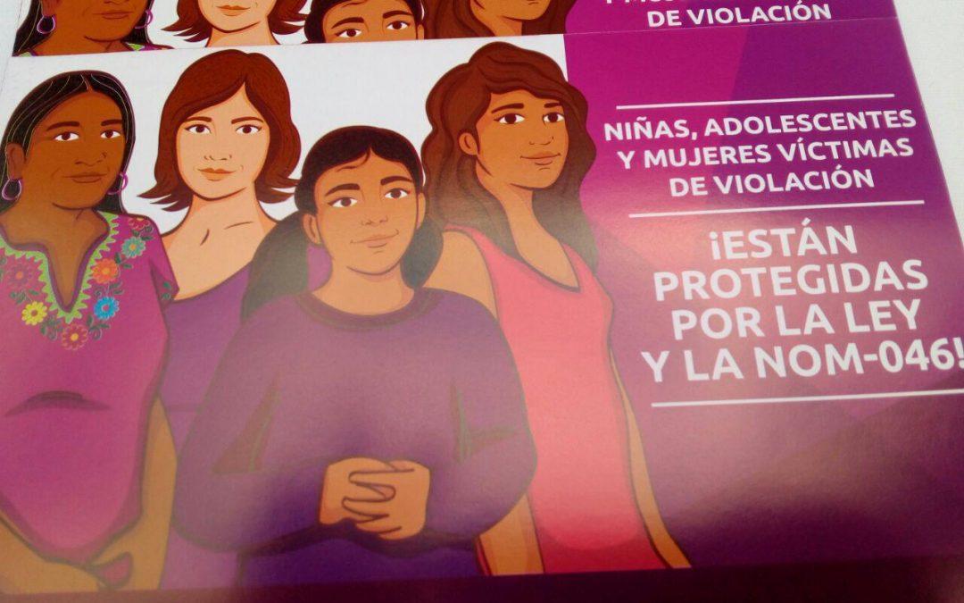 """Brigadas de la campaña """"Tú puedes elegir un aborto legal"""""""