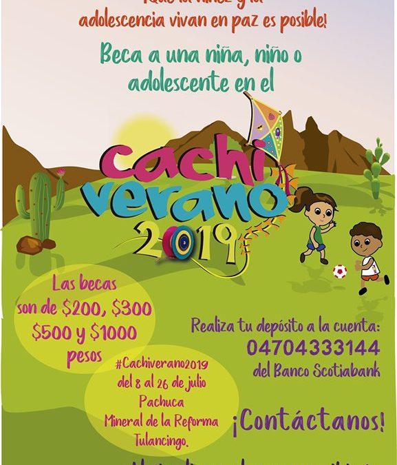 Súmate a SEIINAC desde el Cachiverano 2019